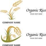 Organisches Reislogo Stockbilder