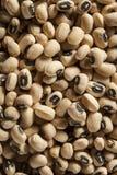 Organisches trockenes Black Eyed Peas Lizenzfreie Stockbilder