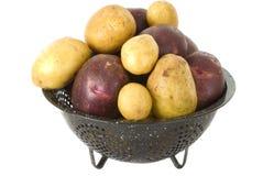 Organisches Yukon-Gold u. blaue Kartoffeln Lizenzfreie Stockbilder