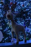 Organiseer Kerstbomen Stock Foto