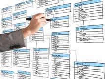 Organisera en databas Arkivbilder