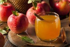 Organisk äppelcider med kanel Royaltyfria Bilder