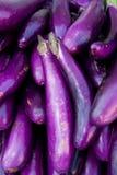 organisk aubergine arkivbilder