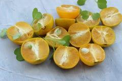 organisk bakgrund fr?n apelsinen Begreppet av sunda drinkar, kopieringsutrymme, closeup royaltyfri bild
