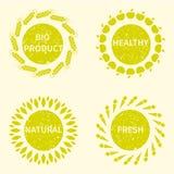 Organisk, bio naturlig logotypdesignmall Arkivbilder