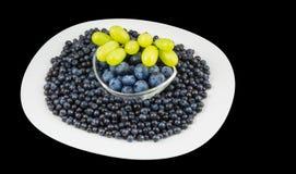 Organisk blåbär och grupp av druvor Vacciniummyrtillus fotografering för bildbyråer