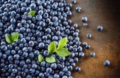 _ Organisk blåbärbakgrund med sidor Bär på mörk bakgrund arkivfoton
