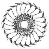 Organisk cirkelmandala royaltyfria bilder