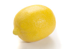 Organisk citron på vit bakgrund Royaltyfria Bilder