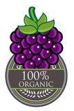Organisk etikett för druva Arkivbild