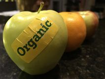 Organisk frukt Royaltyfri Bild