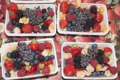 Organisk frukt och grönsak: mjuk frukt Royaltyfri Bild