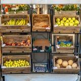 Organisk fruktställning arkivbild