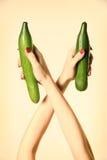 organisk grönsak för gurkahand Royaltyfria Bilder