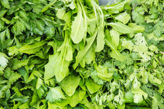 Organisk grönsak på bondemarknaden Royaltyfria Bilder