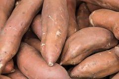 Organisk grönsak på bondemarknaden Royaltyfri Foto