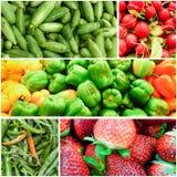 Organisk grönsakcollage Arkivfoton