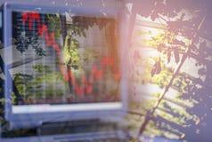 Organisk grönsakträdgård och ljus i morgon på ett stängt Icke-gift för lantgårdsystem och ett materiel för visning för datorskärm arkivfoto