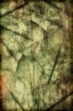 organisk grunemix Arkivfoto