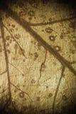 organisk grungemix Arkivbilder