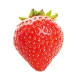 organisk jordgubbe Arkivbild