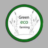Organisk lantgård Etikett för Eco gräsplanvektor Royaltyfria Bilder