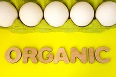 Organisk mat - fegt äggbegreppsfoto Fega ägg i grönt förpacka för papp är på en gul bakgrund med ordorganet Royaltyfri Fotografi
