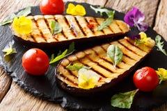 Organisk mat: grillade aubergine och tomater med örter och edibl Arkivbild
