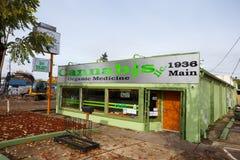 Organisk medicin Springfield Oregon för cannabis royaltyfri foto