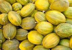 Organisk mogen melonhög Royaltyfri Fotografi