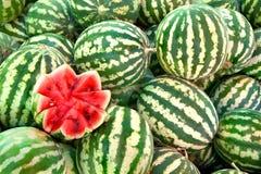 Organisk mogen vattenmelonhög Royaltyfri Bild