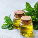 Organisk nödvändig mintkaramellolja med gröna sidor Arkivfoton