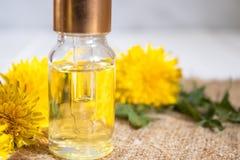 Organisk n?dv?ndig olja i en liten exponeringsglaskrus med gr?na sidor och maskrosblommor p? tabellen n?dv?ndig blommaolja fotografering för bildbyråer