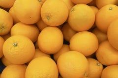 Organisk ny mandarin i fruktmarknad Orange friskhet f Royaltyfri Fotografi