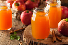 Organisk orange äppelcider arkivbilder