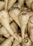 organisk palsternacka Fotografering för Bildbyråer