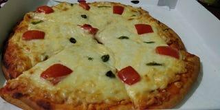 Organisk pizza med grönsaker och ost arkivbild