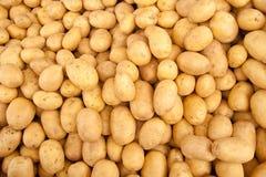 Organisk potatishög Arkivbilder