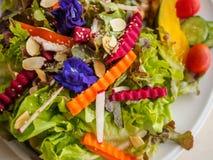 Organisk sallad för ny grönsak på vit disk Arkivfoton