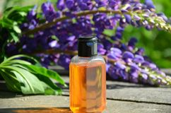 Organisk skönhetsmedel med lavendelblommor och olja på vit bakgrund arkivbilder
