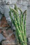 Organisk sparris mot en lantlig bakgrund Fotografering för Bildbyråer