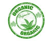 organisk stämpel Royaltyfri Fotografi