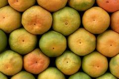 Organisk tangerinfrukt fotografering för bildbyråer
