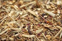 Organisk tea för Lemongrass royaltyfri bild