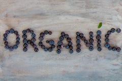 Organisk text Royaltyfria Foton