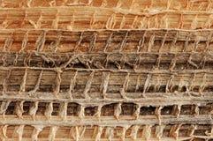 organisk textur Arkivfoton
