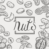 Organisk tokig mat stock illustrationer