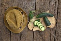 Organisk trädgård för gurka Fotografering för Bildbyråer