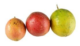 Organisk tropisk passionfrukt Arkivfoto