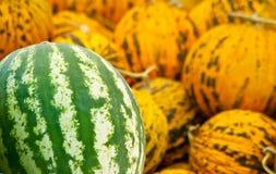 Organisk vattenmelon- och Casabamelonhög Arkivfoton
